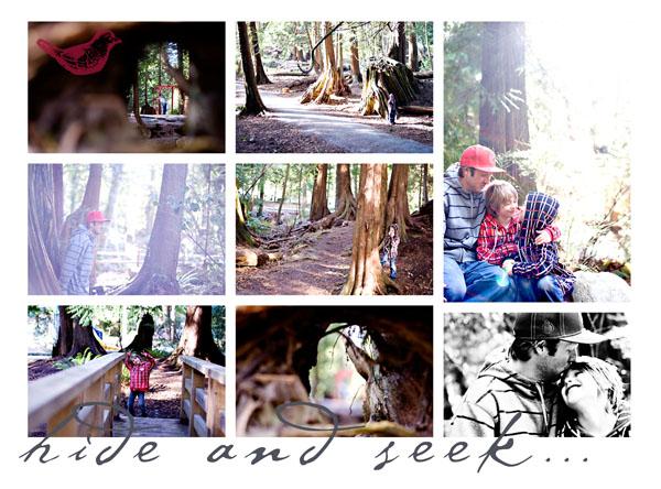 Hide$seek_2010w